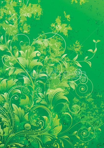 Green Background  Stock photo © keofresh