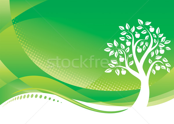 Groene boom vector downloaden eps boom voorjaar Stockfoto © keofresh