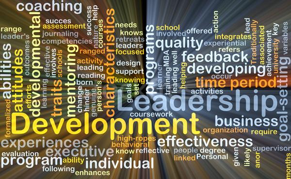 Leiderschap ontwikkeling illustratie licht Stockfoto © kgtoh