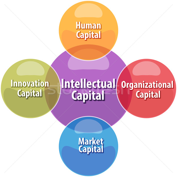Intellectual capital business diagram illustration Stock photo © kgtoh