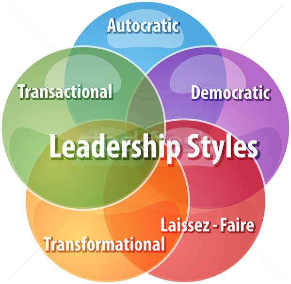 Leadership styles business diagram illustration Stock photo © kgtoh