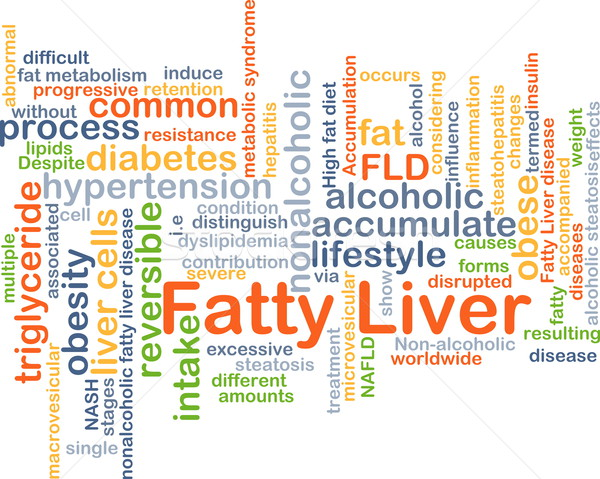 Fatty liver background concept Stock photo © kgtoh