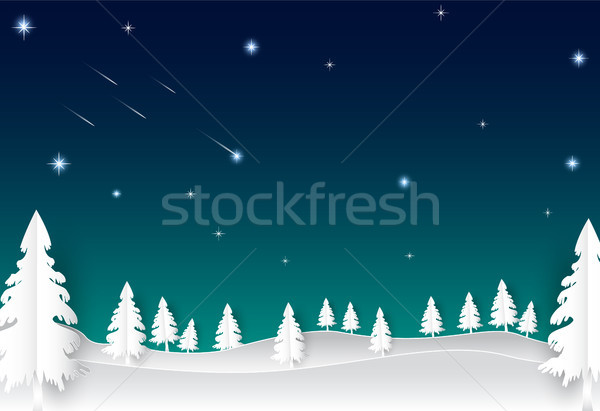 Night sky with star and comet, landscape nature background Stock photo © Kheat