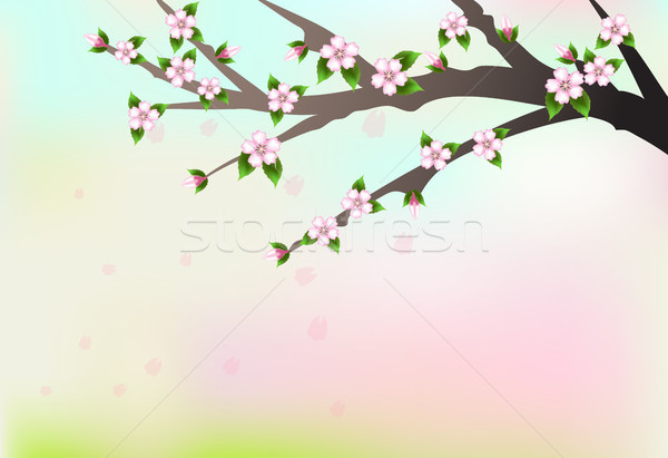 Cherry blossom branch and petals floating, illustration nature background Stock photo © Kheat