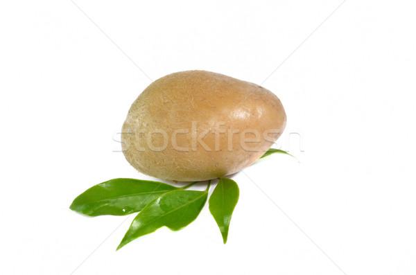 Fresh potato isolated on white Stock photo © Kheat