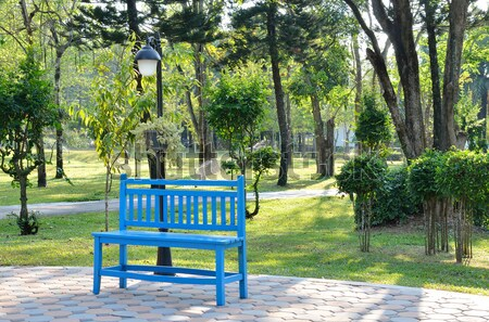 青 ベンチ 公園 春 草 スペース ストックフォト © Kheat