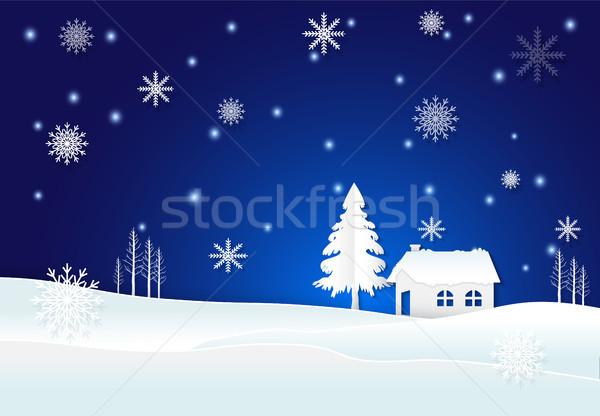 コテージ 雪 スノーフレーク 冬 青 クリスマス ストックフォト © Kheat