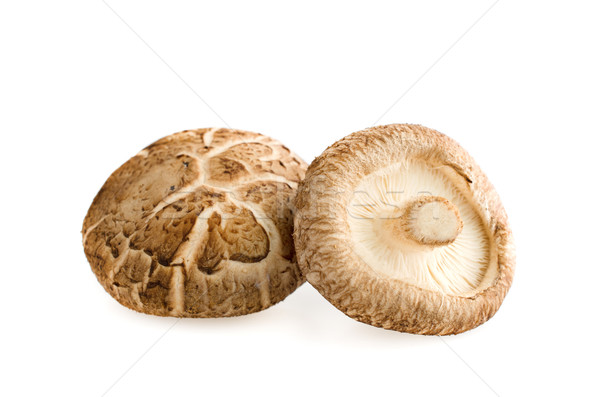 Shiitake mushrooms on white Stock photo © Kheat