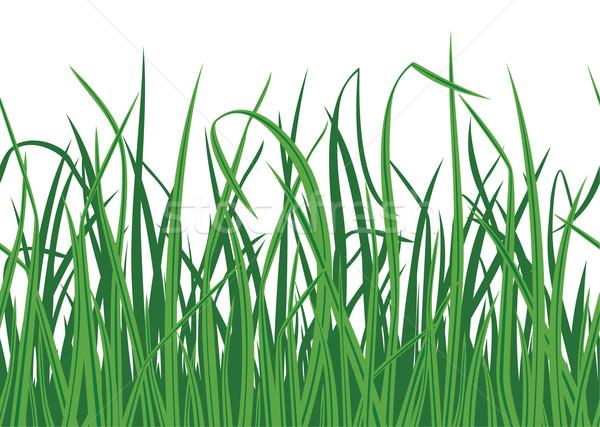 çim kenar manzara bahçe arka plan Stok fotoğraf © khvost