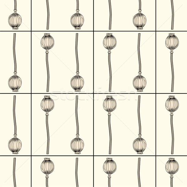 Papavero texture natura wallpaper pattern Foto d'archivio © khvost