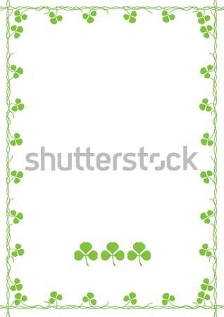 Trifoglio erba abstract foglia verde bianco Foto d'archivio © khvost