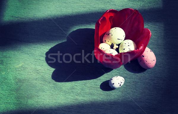 Húsvéti tojások tulipánok felső kilátás piros felszolgált Stock fotó © Kidza