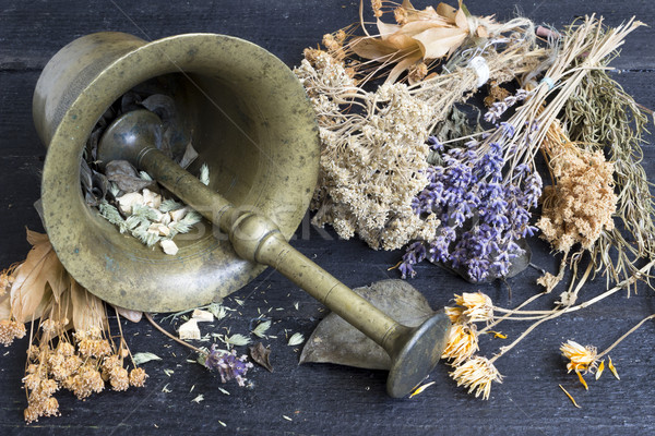 Nature medicine. Alternative medicine Stock photo © Kidza