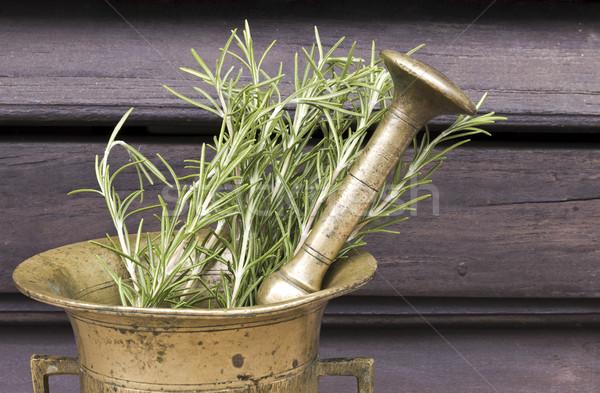 Rozmaring friss kert háttér gyógyszer főzés Stock fotó © Kidza