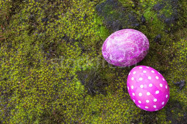 Dekoratif paskalya yumurtası doğrudan doğruya üzerinde atış yosun Stok fotoğraf © Kidza