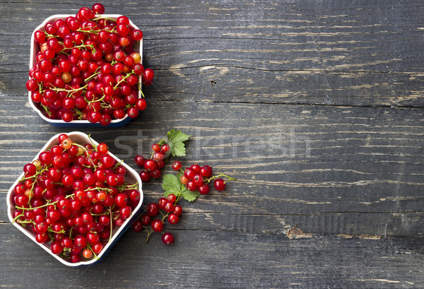 Redcurrant Stock photo © Kidza