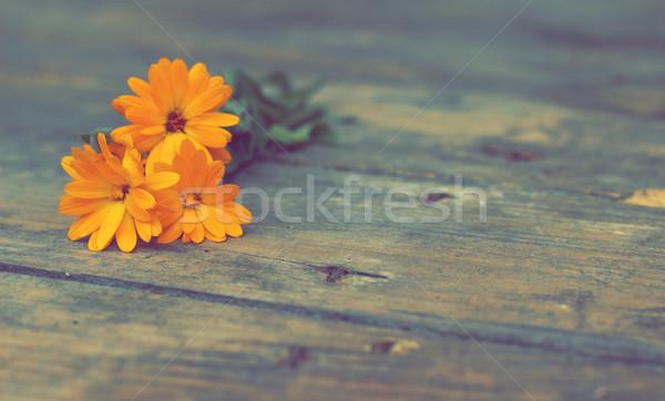 Nazik çiçek ahşap filtre etki Retro Stok fotoğraf © Kidza