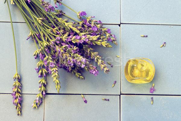 Lawendy kwiaty butelki olejek lawendowy ceramiczne Zdjęcia stock © Kidza
