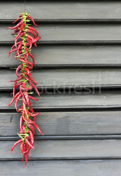 Piros chilli paprikák terv háttér főzés Stock fotó © Kidza
