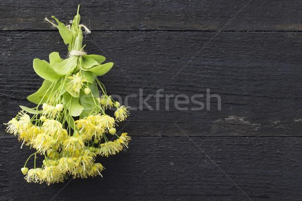 Linden flowers . Traditional medicine Stock photo © Kidza