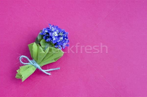 Bukiet kwiat charakter piękna lata zielone Zdjęcia stock © Kidza