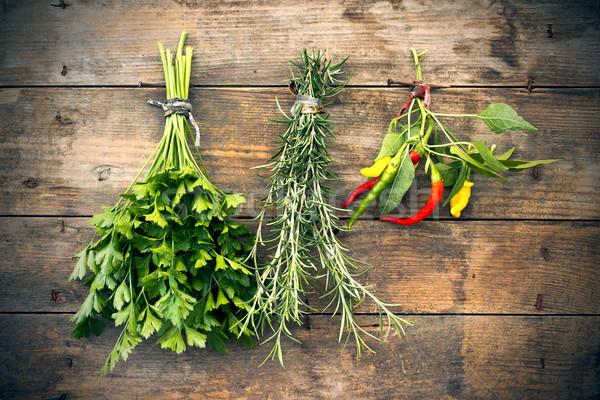 Pietruszka rozmaryn hot zioła wiszący Zdjęcia stock © Kidza