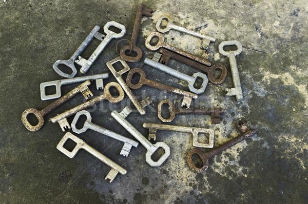 Old keys collection Stock photo © Kidza
