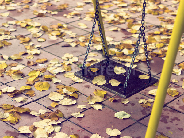 Foto d'archivio: Vuota · catena · swing · parco · giochi · foglie