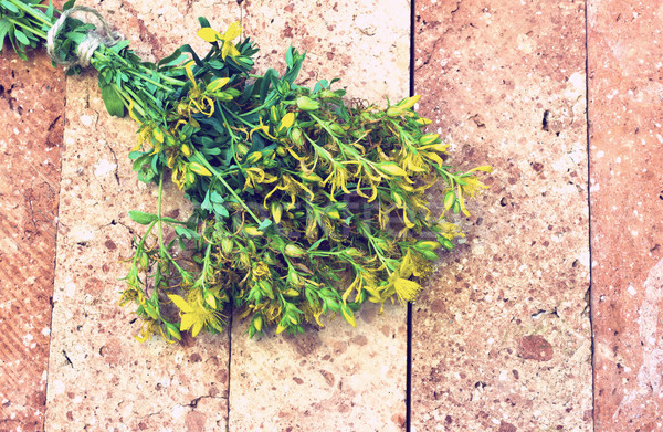 Floración ladrillo vintage mirar hojas ramo Foto stock © Kidza