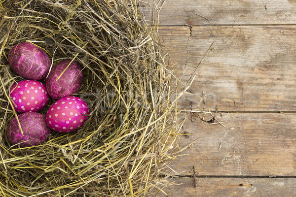 Pembe paskalya yumurtası yuva Paskalya model yaratıcı Stok fotoğraf © Kidza