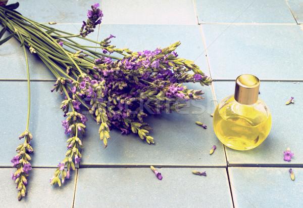 Foto d'archivio: Lavanda · fiori · vintage · guardare · occhiali