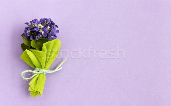 Virágcsokor kék legelő parfüm lila virág Stock fotó © Kidza