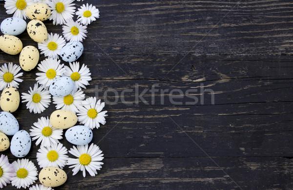 Daisy bloemen paaseieren Pasen voorjaar hout Stockfoto © Kidza