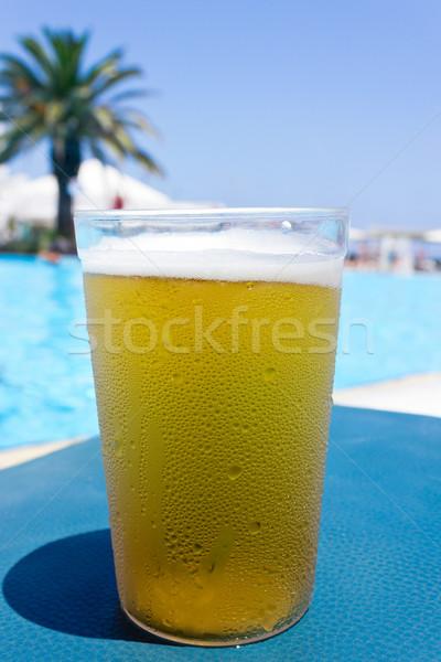 Stock fotó: Sör · üveg · hideg · tengerpart · égbolt · étel