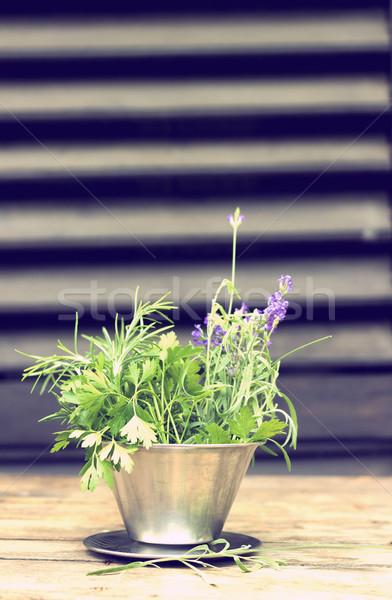 庭園 新鮮な ハーブ 金属 弓 ストックフォト © Kidza