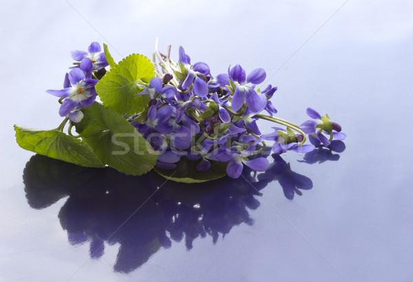 Bukiet kwiat liści romans wiosenny kwiat Zdjęcia stock © Kidza