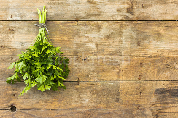 Peterselie bos blad gezondheid achtergrond groene Stockfoto © Kidza
