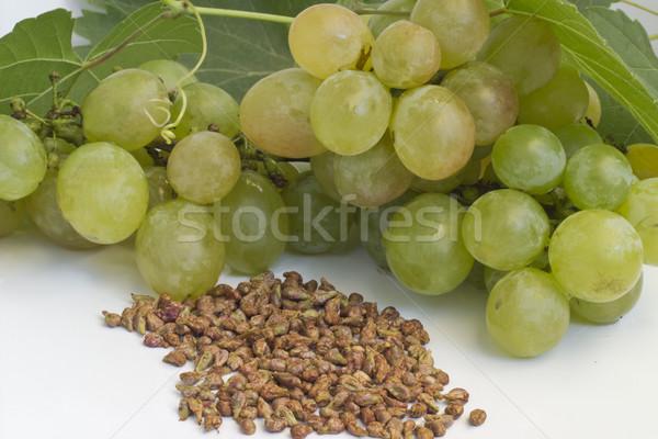 ブドウ 種子 白 食品 業界 油 ストックフォト © Kidza