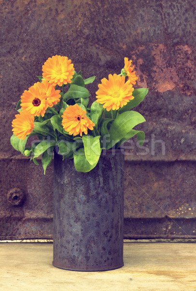 Marigold flowers (Calendula Officinalis) Stock photo © Kidza