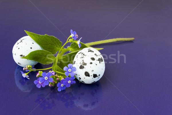 Tavaszi virágok húsvéti tojások kellemes húsvétot húsvét boldog tojás Stock fotó © Kidza