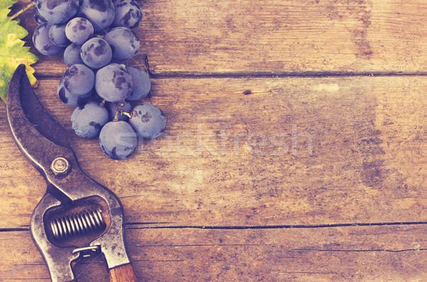 Grape harvesting , vintage-retro effect Stock photo © Kidza