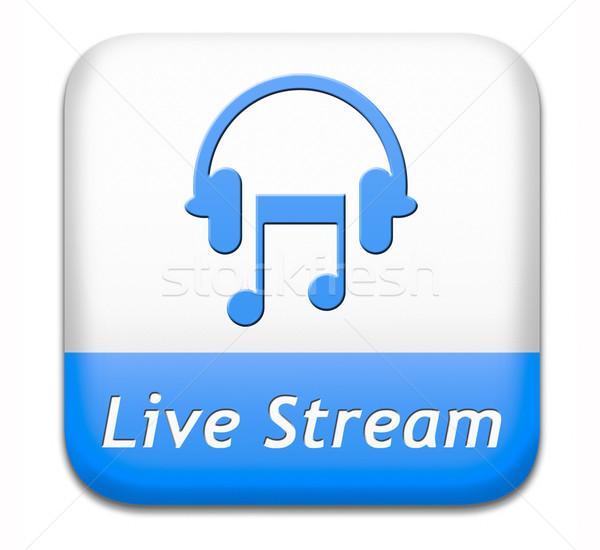 Musica vivere stream pulsante canzone audio Foto d'archivio © kikkerdirk