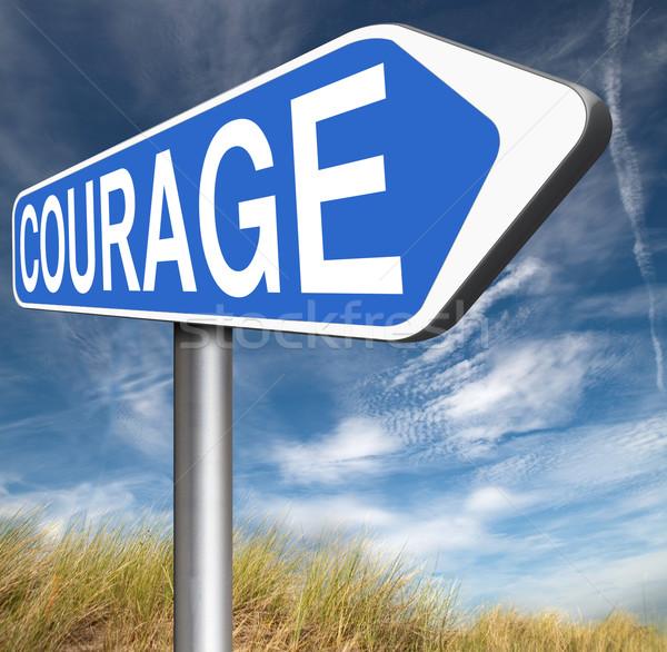 勇気 能力 恐怖 痛み 危険 ストックフォト © kikkerdirk