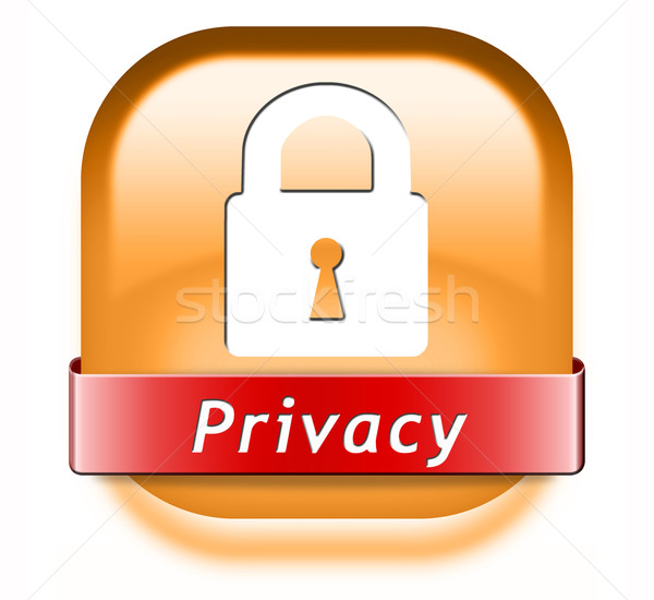 privacy button Stock photo © kikkerdirk