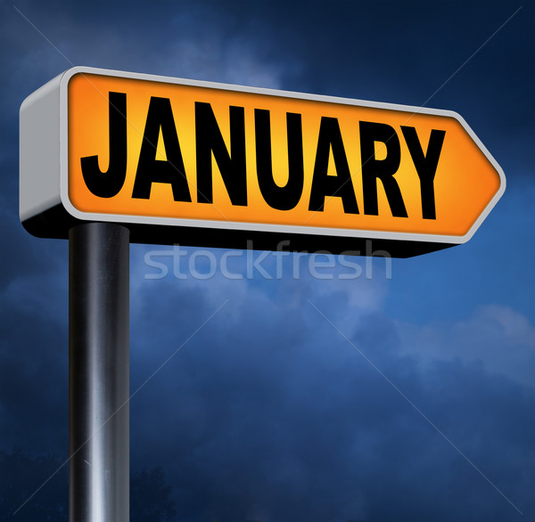 January Stock photo © kikkerdirk