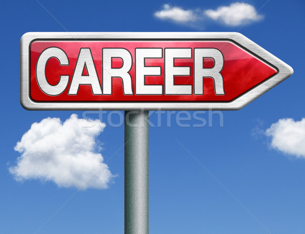 career road sign arrow Stock photo © kikkerdirk