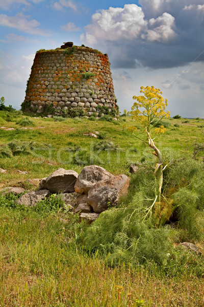 Nuraghe tower sardinia Italy Stock photo © kikkerdirk