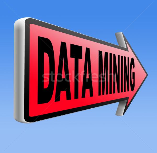 data mining Stock photo © kikkerdirk