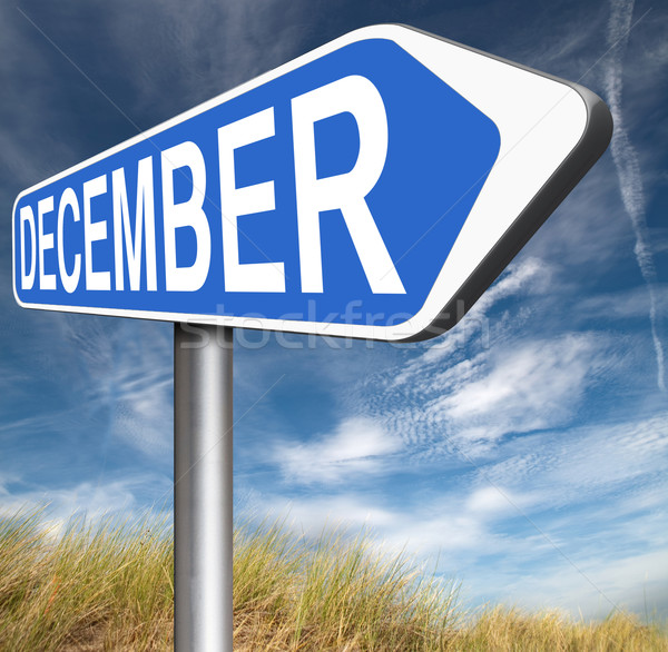 December Stock photo © kikkerdirk