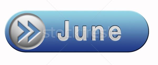 June icon Stock photo © kikkerdirk